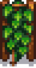 Hops Stage 6.png