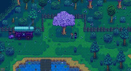 Leah Seven Hearts Rain 1.jpg