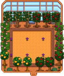 Greenhouse - Stardew Valley Wiki
