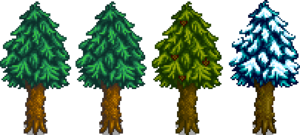 Pine Stage 5.png