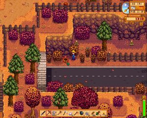 Backwoods Stardew Valley Wiki Once you get there make sure you get on the paved road. backwoods stardew valley wiki